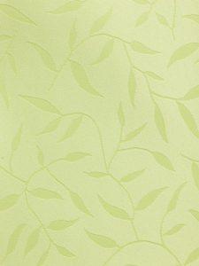 Leaf2257